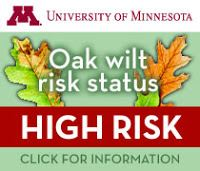 oakwilt-high-risk