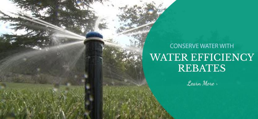 Water Efficiency Rebate